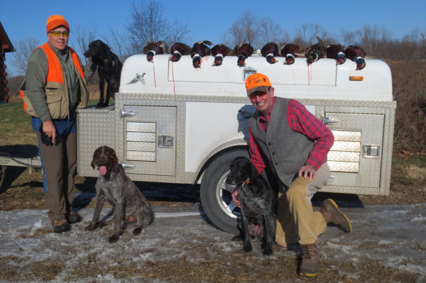 dogs, hunters & pheasants at PQ Ranch
